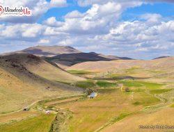 روستای شورجه حمید