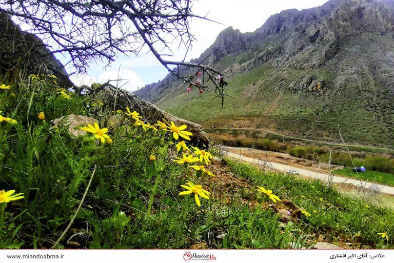 چاغر احمد شهرستان میاندوآب